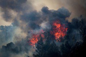 Portugalijai nesiseka suvaldyti gaisro Algarvėje