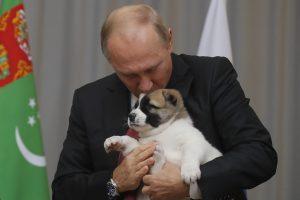 Rusijos prezidentas dovanų gavo dar vieną šuniuką