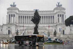 Italai vėl nepatenkinti Kalėdų egle Romos centre