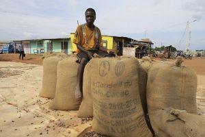 Iš kakavos plantacijų išgelbėta 4 tūkst. ten vergavusių vaikų