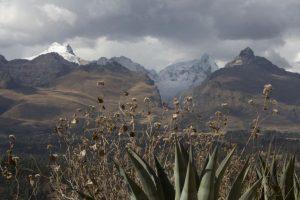 Peru šiaurę supurtė 6 balų žemės drebėjimas