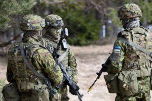 Lietuva prisidės prie Estijos, Latvijos ir Danijos kuriamos Šiaurės divizijos