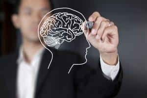 VU mokslininkai su šveicarais gilinsis į smegenų veiklą