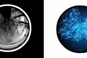 Fotografijų parodoje – priešingybių harmonija