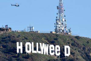 Suimtas garsųjį Holivudo ženklą šmaikščiai pakeitęs asmuo