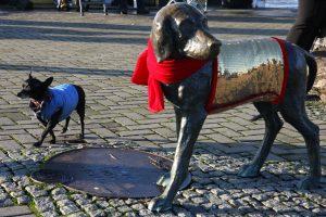 Bronzinis berniukas su šuneliu papuošti naujais kostiumais