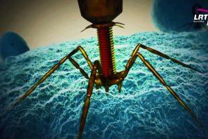 DNR karpymas leis išgydyti genetines ligas
