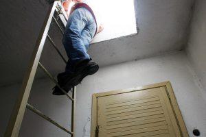Ant Šiaulių darželio direktorės garažo stogo – dirbantis pavaldinys