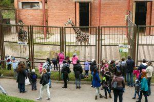 Zoologijos sode – paslaptinga naujovė