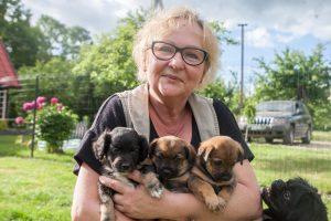 Kieme šeimininkauja daugiau kaip 20 benamių šunelių