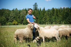 Kauno rajone įsisiūbuoja reti verslai: kopūstus keičia šilauogės