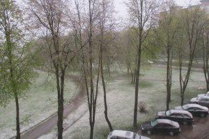 Kauną nuklojo baltas sniego patalas