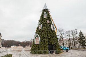 Netrukus sužibs sostinės Kalėdų eglė