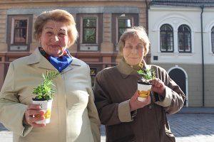 Studentai dalijo mamoms gėles