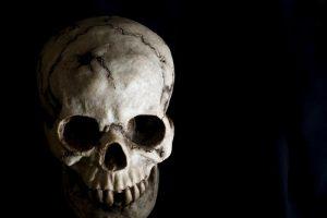 Kraupus radinys: Vilniuje rasta žmogaus kaukolė ir griaučių fragmentai
