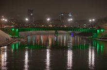 Žaliąjį tiltą siūloma puošti laikinomis meno instaliacijomis