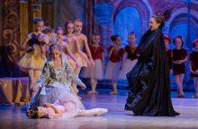 """""""Miegančiąją gražuolę"""" šoks geriausios pasaulyje baleto mokyklos vaikai"""