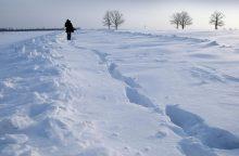 Klimatologas: klimato kaita turi ir pliusų, bet minusų gerokai daugiau