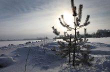 Orai: po truputį atsėlina tikra žiema