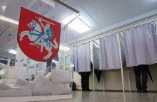 Seimas atmetė siūlymą mažinti referendumo kartelę Konstitucijos keitimui