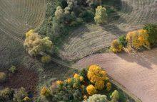 Pokyčiai žemės savininkams: mokestį skaičiuos pagal naują tvarką