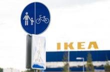 """""""Ikea"""" valdo 15 tūkst. hektarų Lietuvos miškų"""