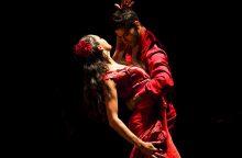 """""""Kristupo Kalėdos"""": nuo flamenko baleto iki Hario Poterio magijos"""