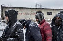 Į Lietuvą perkelta dar 15 pabėgėlių iš Sirijos