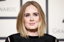 """Gąsdinanti popmuzikos žvaigždės Adele užuomina: gastrolės """"25"""" – paskutinės?"""