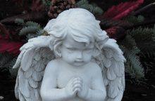Tragedija Klaipėdos rajone – nuskendo 3 metų mergaitė