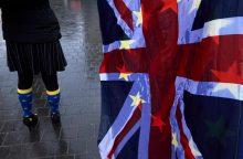 """Aktyvistai: po """"Brexit"""" Britanija privalės paklusti ES aplinkosaugos taisyklėms"""