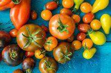Įdomūs ir originalūs patiekalai iš pomidorų