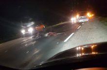 Prienų rajone vairuotojams kelią pastojo netikėta kliūtis
