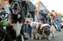 Gyvūnų globėjo dieną – Vatikano atstovo vizitas