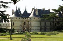 Prancūzijos sodų paroda: kvarco žiedai ir išdegusios žemės eksperimentai
