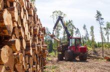 Pagrindinė išaugusių medienos kainų priežastis – Latvija