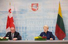 Gruzijos prezidentas prašo Lietuvos ginti jos interesus NATO