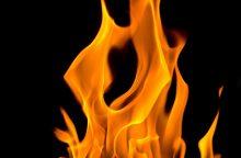 Ežerėlį niokojo didelis gaisras