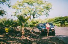 Havajuose gyvenanti rašytoja V. Rykštaitė: čia apie vaikų mušimą net nepajuokausi