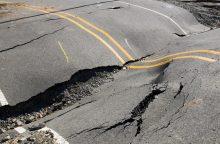 Japonijos pietvakarius sukrėtė 5,2 balo žemės drebėjimas