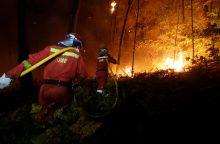 Portugalijoje ir Ispanijoje per miškų gaisrus žuvo mažiausiai 30 žmonių