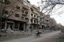 V. Putinas reikalauja iš Europos pagalbos atstatant Siriją
