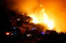 Pietų Prancūzijoje šimtai ugniagesių kovoja su miškų gaisrais