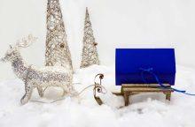 Ar įmanoma Kalėdoms padovanoti sveikatą?