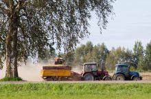 Draudikai ruošiasi žalų bangai nuimant derlių