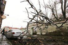Vėjas laužė šakas, Telšiuose užmetė iškabą ant turizmo centro stogo