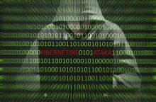 Didžiausias saugumo iššūkis elektroninėje erdvėje – užvaldytos svetainės