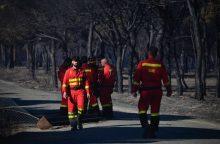 Ispanijos ugniagesiai suvaldė miško gaisrą, kėlusį grėsmę nacionaliniam parkui