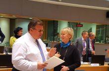 Ministras: turime užtikrinti savalaikę ES reakciją į Rusijos provokacijas Ukrainoje