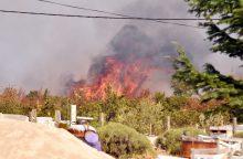 Kroatijoje prie Adrijos jūros siaučia miško gaisrai, evakuojami žmonės